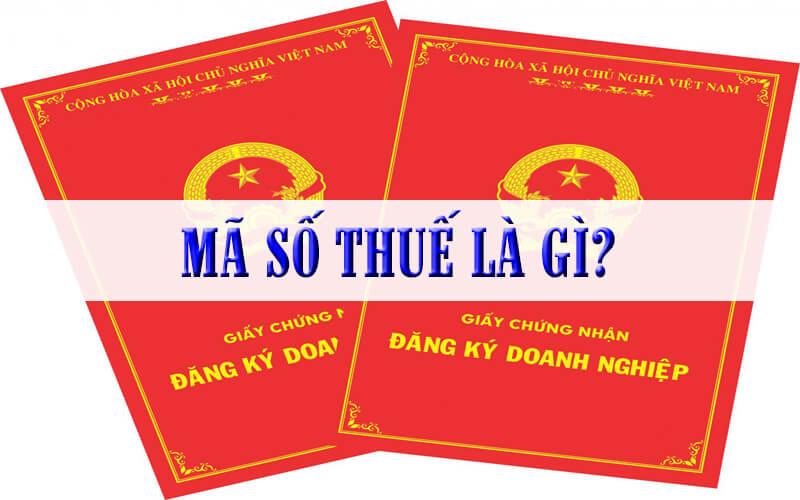 Mã số thuế tiếng Anh là gì? Cấu trúc và các loại mã số thuế tại Việt Nam